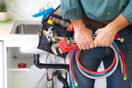 Expert Side Cutting Pliers Wire Cable Cut Cutters Electricians main Snips paysagère